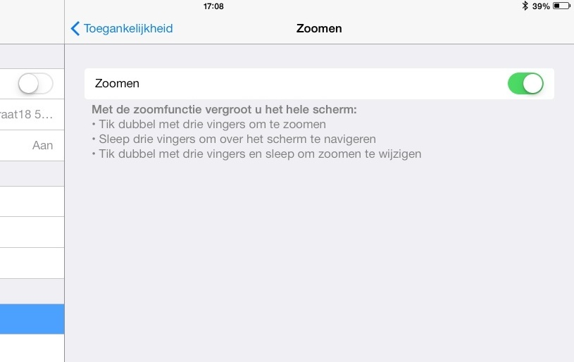 iOS_accessibility Zoom